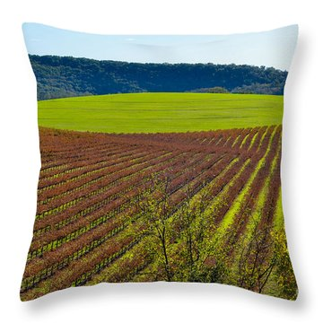 Rolling Hills And Vineyards Throw Pillow by CML Brown