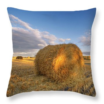 Rolling Hills Throw Pillow by Dan Jurak