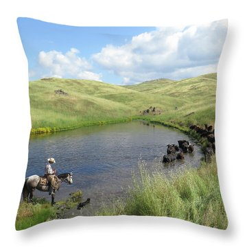 Rolling Hills Throw Pillow by Diane Bohna