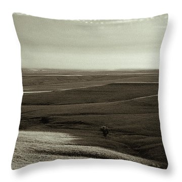Rolling Hills Toned Throw Pillow