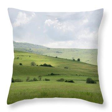 Rolling Landscape, Romania Throw Pillow