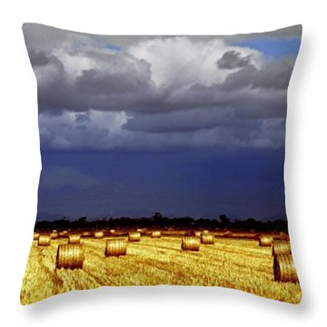 Rolling On Throw Pillow