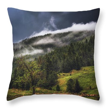 Rolling Through The Trees Throw Pillow