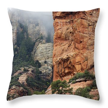 Throw Pillow featuring the photograph Rollings Mists by Phyllis Denton