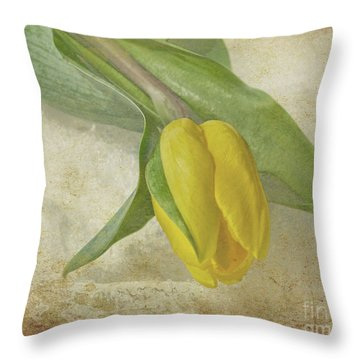Throw Pillow featuring the photograph Romance by Traci Cottingham