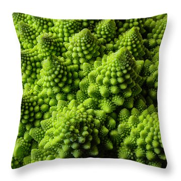 Romanesco Broccoli Throw Pillow by Garry Gay