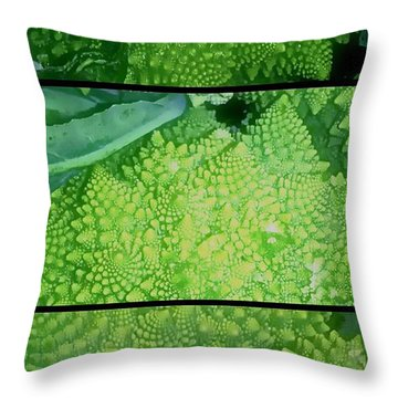 Romanesco Throw Pillow