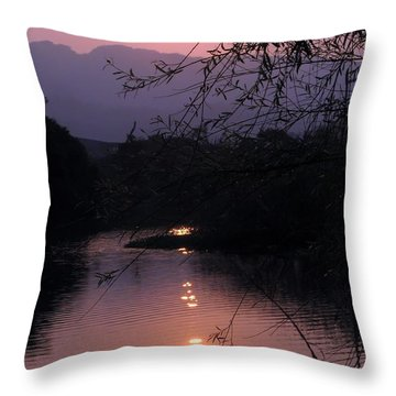 Romantic Afternoon By The Lake Throw Pillow by Yali Shi