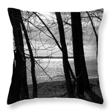 Throw Pillow featuring the photograph Romantic Lake by Valentino Visentini