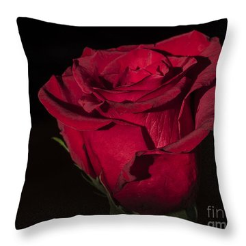Romantic Rose Throw Pillow