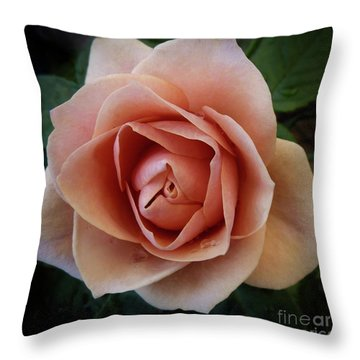 Throw Pillow featuring the photograph Romantic Rose by Patricia Strand