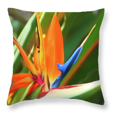 Throw Pillow featuring the photograph Romantic Skies Bird Of Paradise by Aimee L Maher Photography and Art Visit ALMGallerydotcom