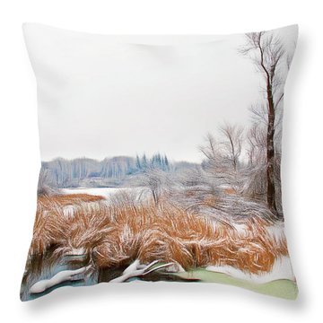 Throw Pillow featuring the photograph Romantic Skies Winters Glory by Aimee L Maher Photography and Art Visit ALMGallerydotcom