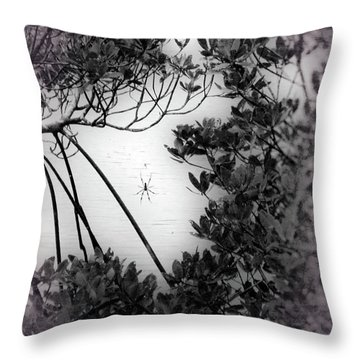 Throw Pillow featuring the photograph Romantic Spider by Megan Dirsa-DuBois
