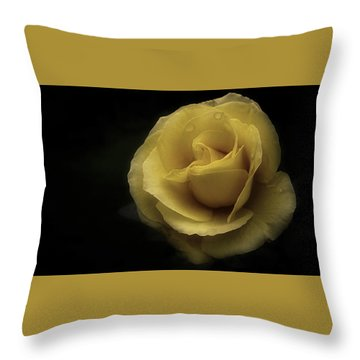 Romantic Yellow Rose 2016 Throw Pillow by Richard Cummings