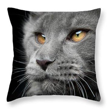 Throw Pillow featuring the photograph Romeo by Robert Sijka