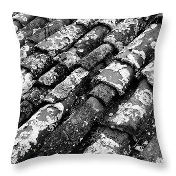 Roof Tiles Throw Pillow by Gaspar Avila