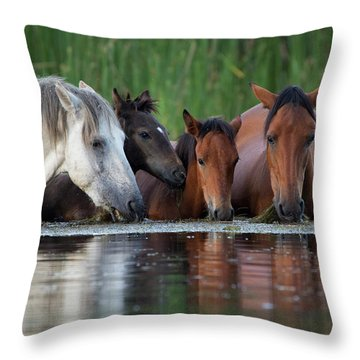 Room For All Throw Pillow by Sue Cullumber