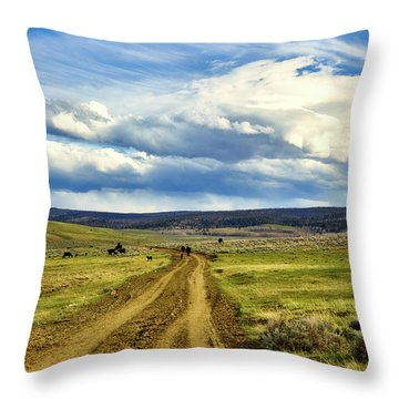 Room To Roam - Wyoming Throw Pillow by L O C