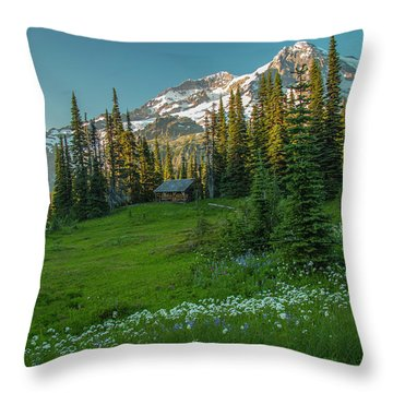 Room With A View 2 Throw Pillow