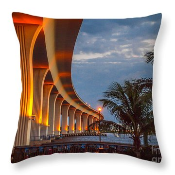 Roosevelt At First Light Throw Pillow