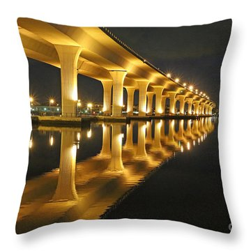 Roosevelt Reflection Throw Pillow