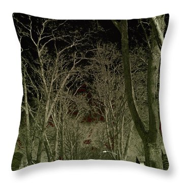 Roosevelt Avenue I Throw Pillow
