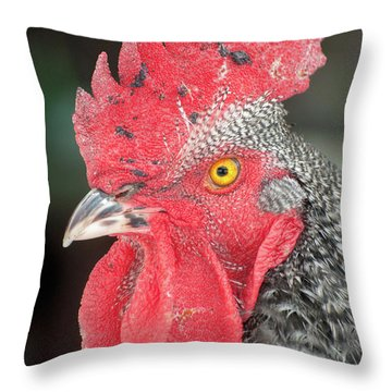 Rooster Named Brute Throw Pillow