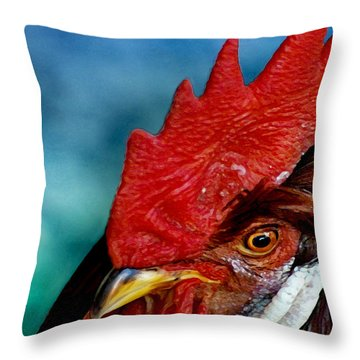 Rooster Throw Pillow by Robert Lacy