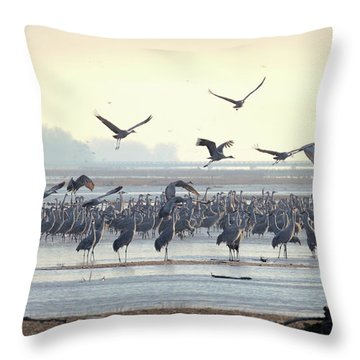 Roosting On The Platte Throw Pillow