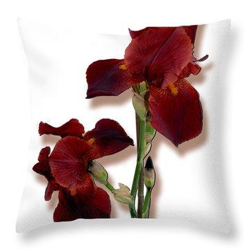 Root Beer Irises Throw Pillow by Tara Hutton