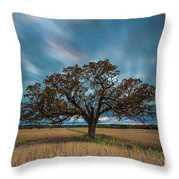 Rooted Waukesha Throw Pillow