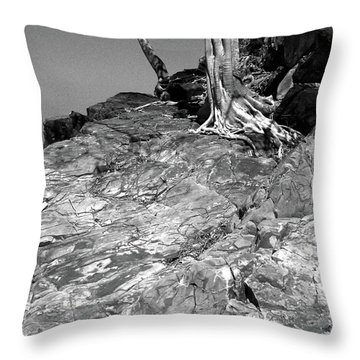 Rootflow Throw Pillow