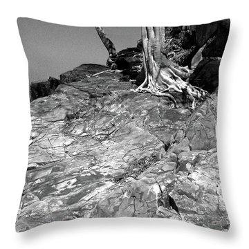 Rootflow Throw Pillow