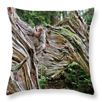Roots - Welcome To Olympic National Park Wa Usa Throw Pillow by Christine Till