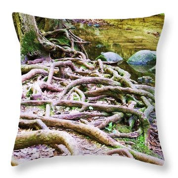 Roots And Rocks I Throw Pillow by Anna Villarreal Garbis