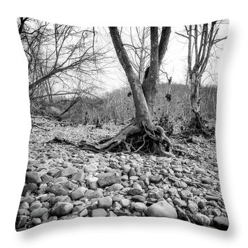 Throw Pillow featuring the photograph Roots And Stones by Alan Raasch
