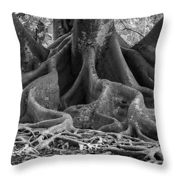 Roots Eleven Throw Pillow