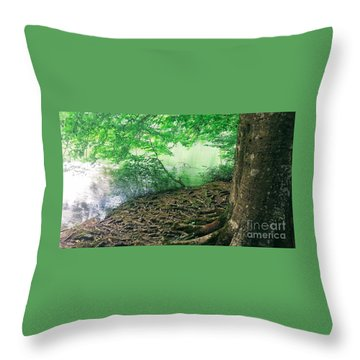 Roots On The River Throw Pillow by Rachel Hannah