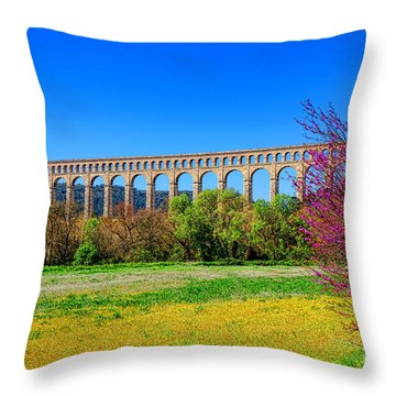 Roquefavour Aqueduct Throw Pillow by Olivier Le Queinec