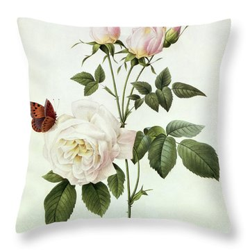 Rosa Bengale The Hymenes Throw Pillow by Pierre Joseph Redoute