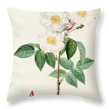 Rosa Damascena Subalba Throw Pillow by Pierre Joseph Redoute