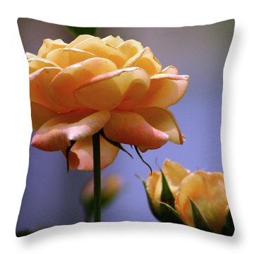 Rose 1156 H_2 Throw Pillow