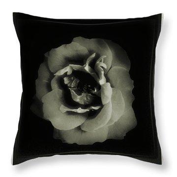 Rose 12 Throw Pillow