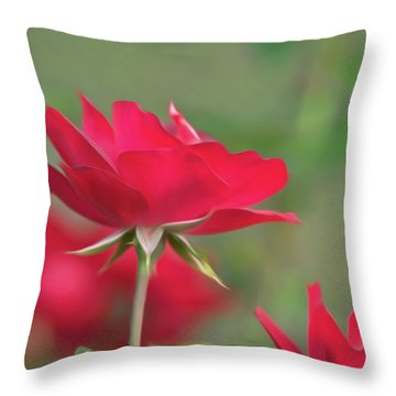 Rose 4 Throw Pillow