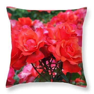 Rose Abundance Throw Pillow by Rona Black