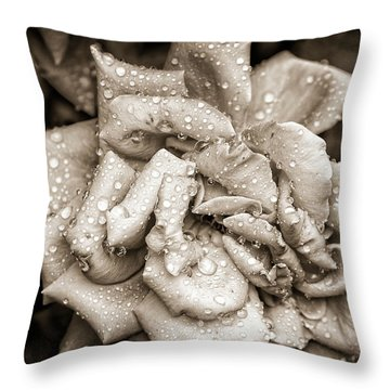 Rose After The Rain Throw Pillow