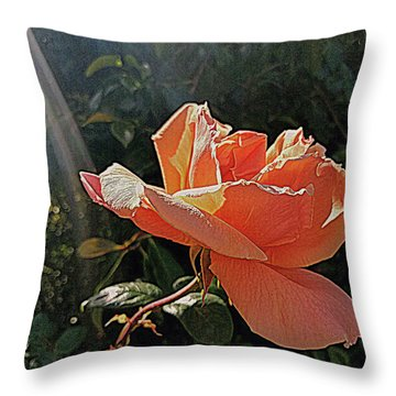 Rose And Rays Throw Pillow