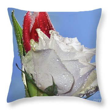 Throw Pillow featuring the photograph Rose And Tulip by Elvira Ladocki