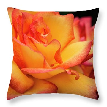 Throw Pillow featuring the photograph Rose Beauty by Jean Noren